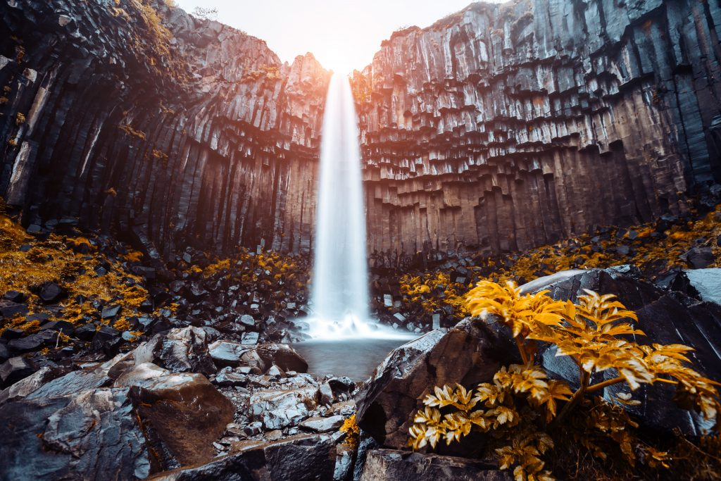waterfall flowing over basalt columns best things to do in Iceland