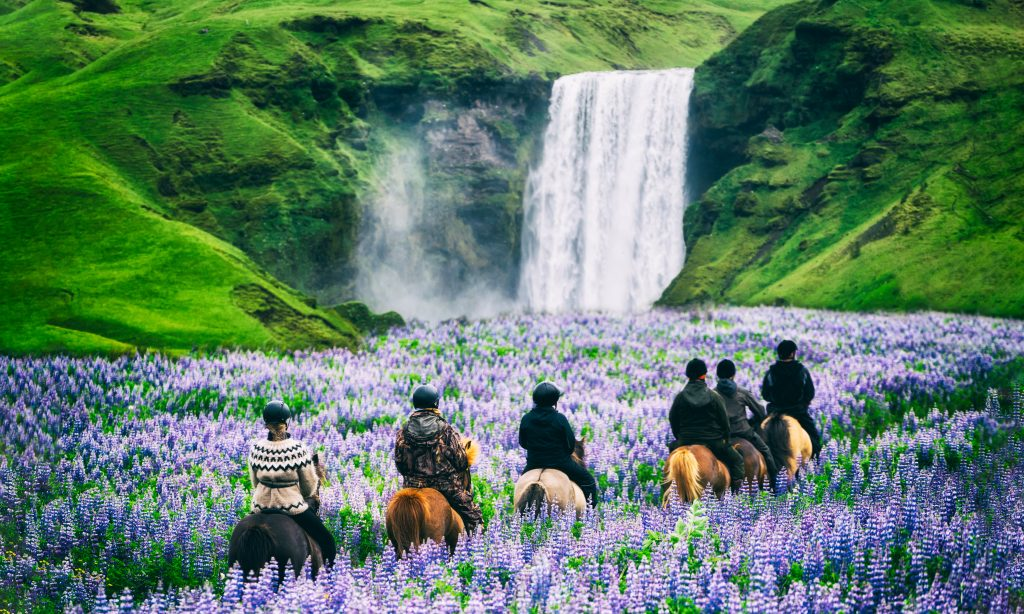 Photo of a horseback guided tour in Iceland with a large waterfall in the background.