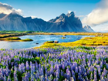Mountains and meadows in Iceland