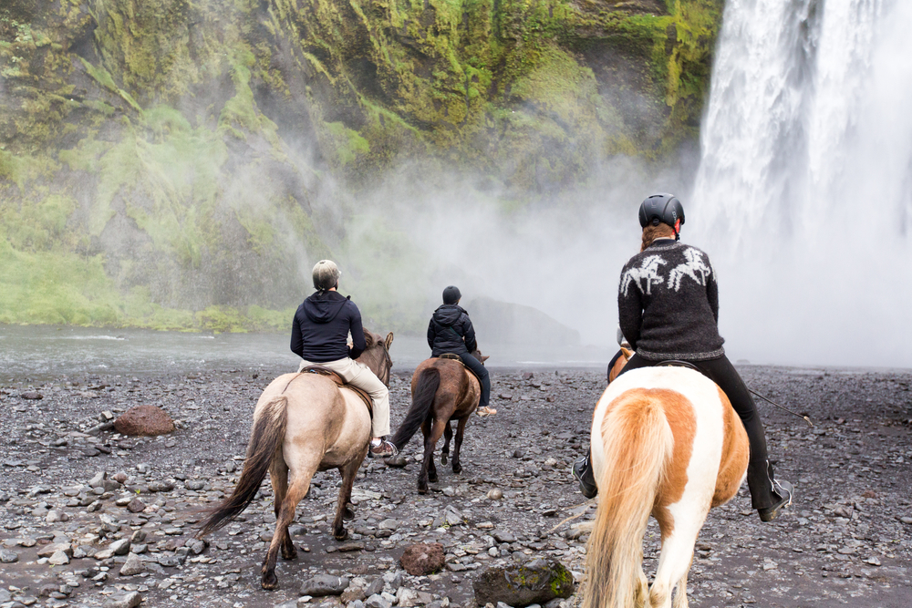 Horse riding is one of the best tours in iceland