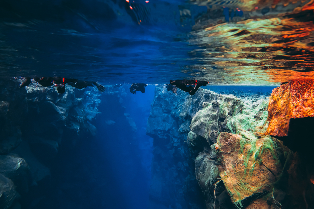 People Snorkeling swimming diving in the blue cold glacier water in famous fissure Silfra between two tectonic plates in the national park Thingvellir in Iceland. Blue transparent water, deep colors.