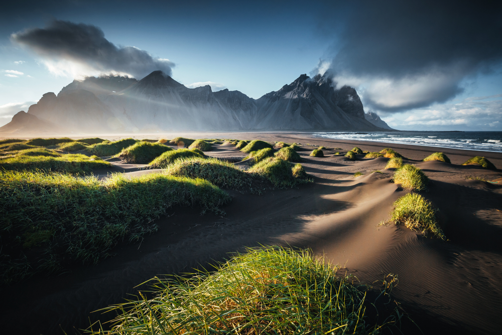 sunrise on black sand beach with grass tuffs in the foreground with the ocean and a large mountain in the background in iceland in spring