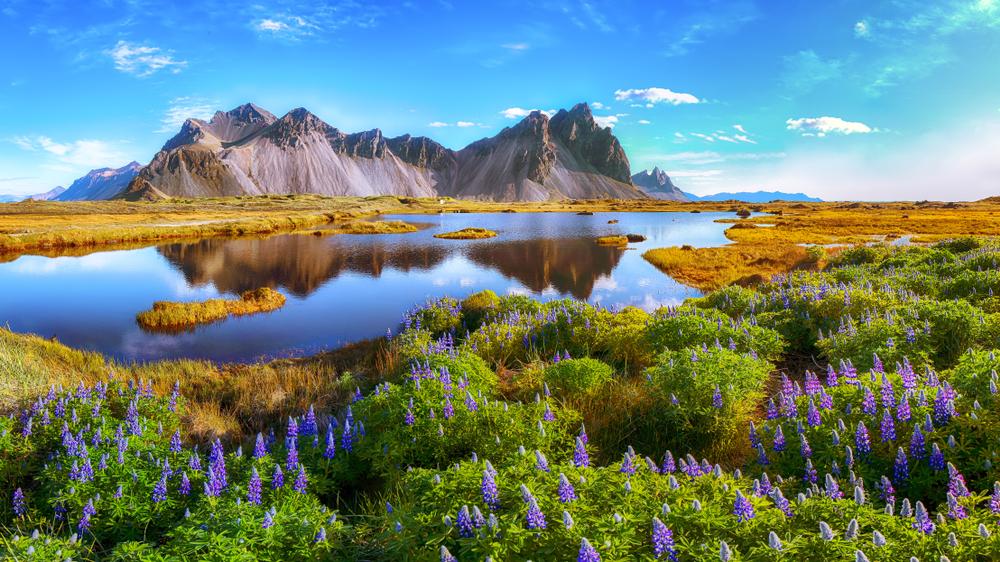 summer in Iceland at Vestrahorn