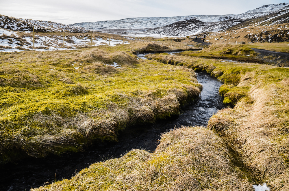 A brook running through the landscape in Thingvellir. The grass is brown and a bit green and in the distance you can see large patches of snow on the ground.