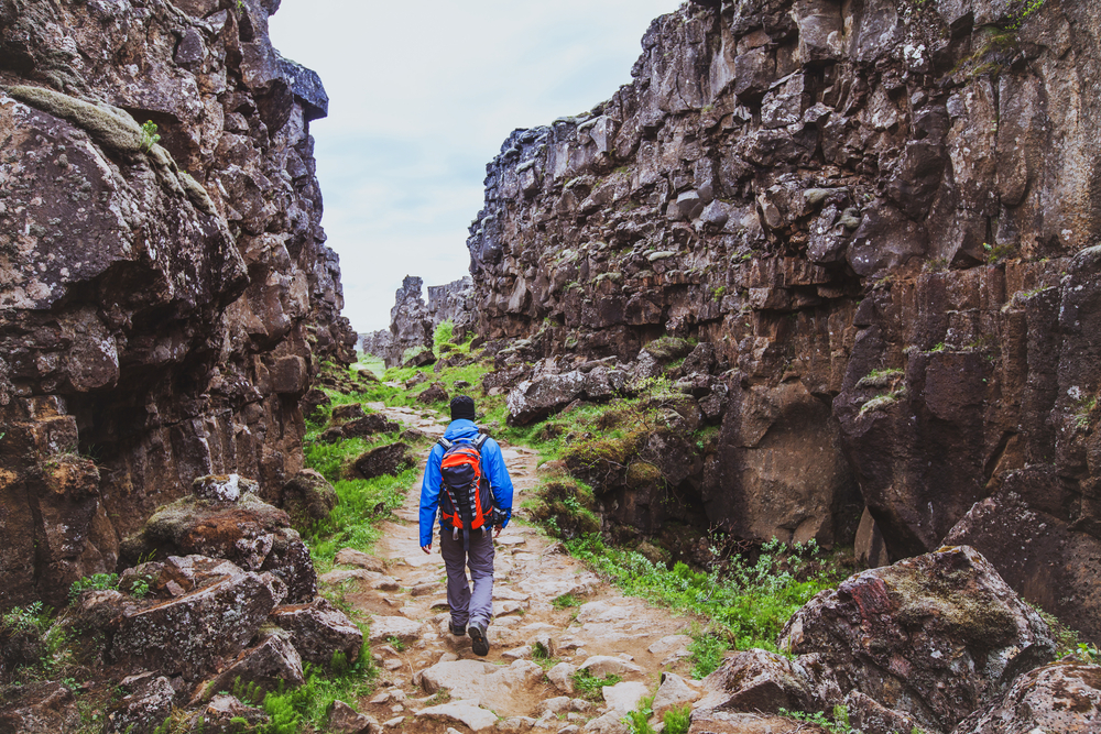 A person wearing a blue shirt, gray pants, and an orange backpack hiking down a stone path between two massive tectonic plates. There is grass and ferns growing on the ground around the plates. One of the best things to do in Thingvellir National Park.