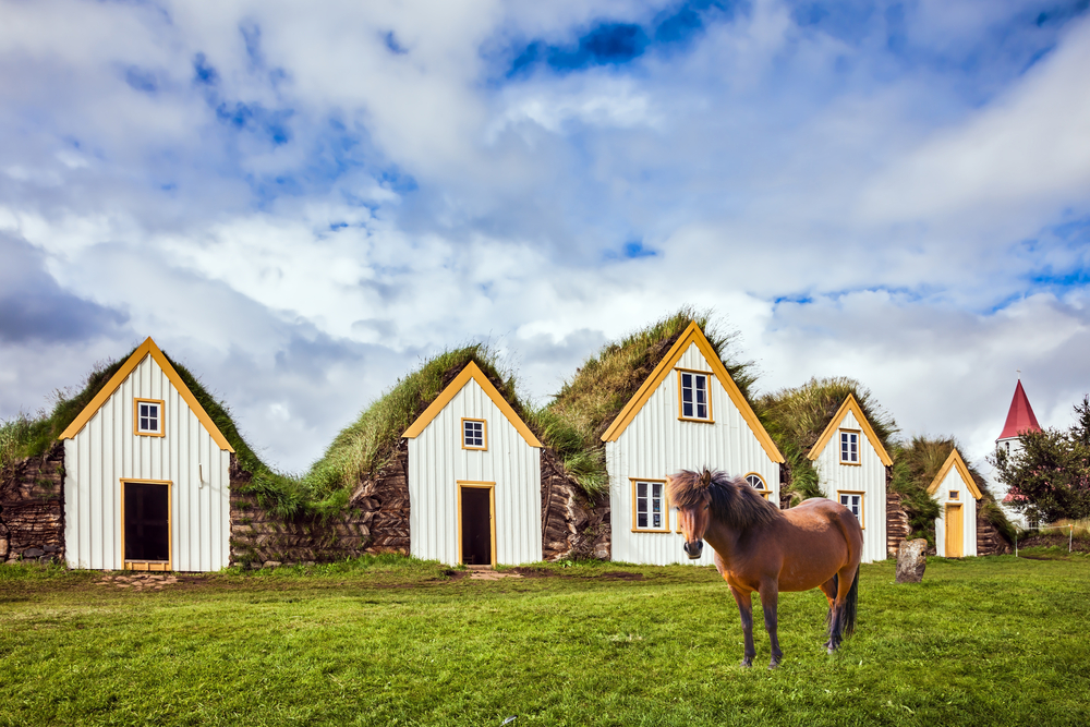 an Icelandic horse in front of some white and yellow turf houses