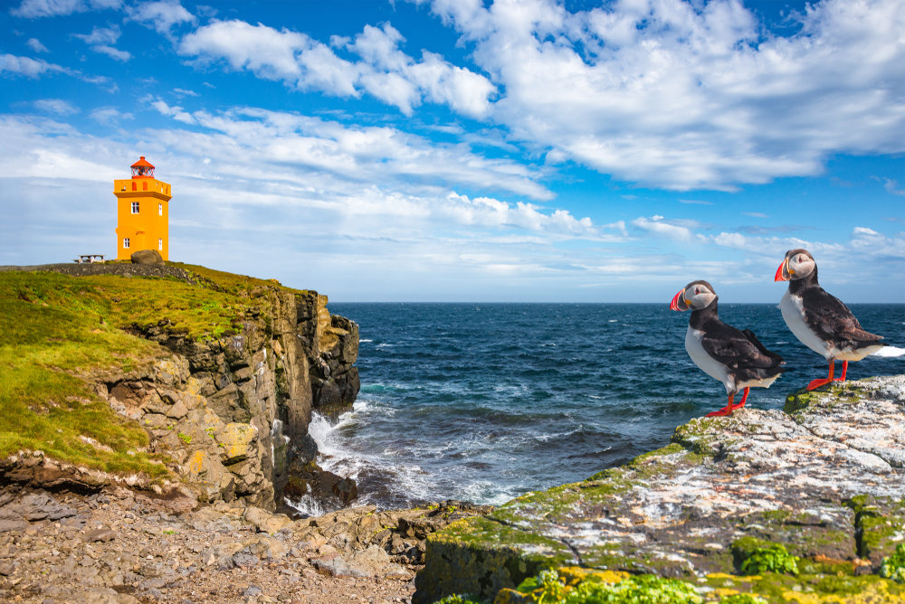 Grimsey Island is special as it is the only part if Iceland that is truly in the Arctic, meaning is it popular with visitors as many come to just have their passports stamped in recognition!