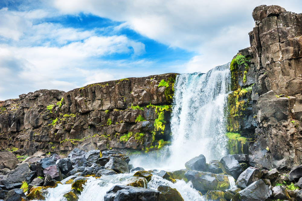 A cascading waterfall over a large rock formation into a shallow river and pool. There is moss and ferns growing on the rocks. One of the best things to do in Thingvellir National Park.