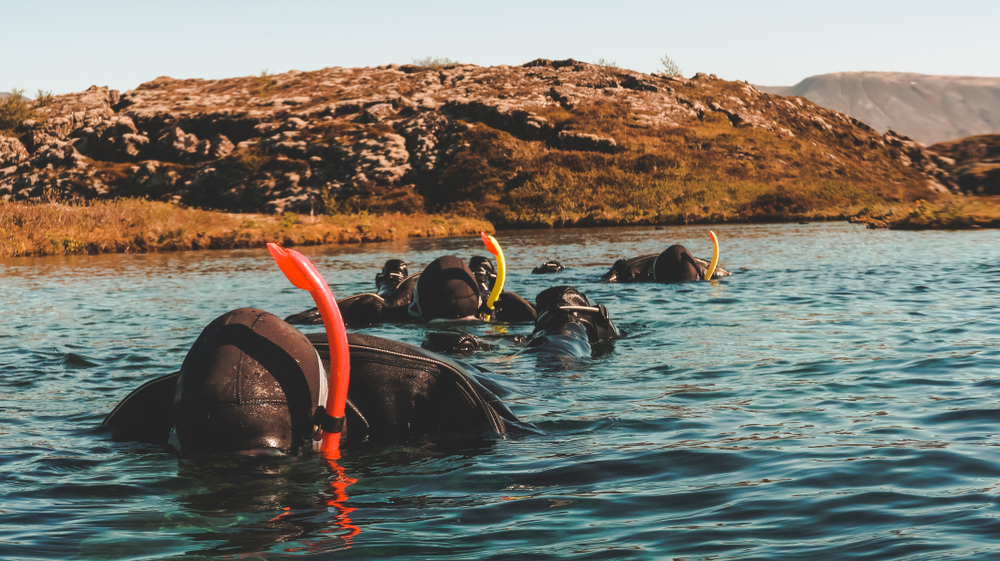 The tops of heads and snorkels are only visible above the sealevel of the silfra fissure tour in iceland